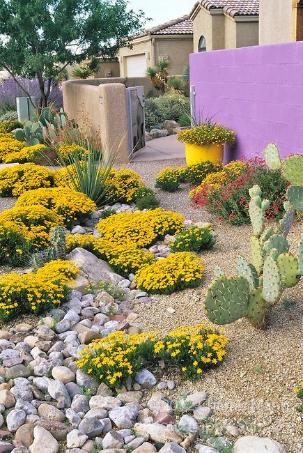 Llandscape architect and garden designer david cristiani for Landscaping rocks albuquerque