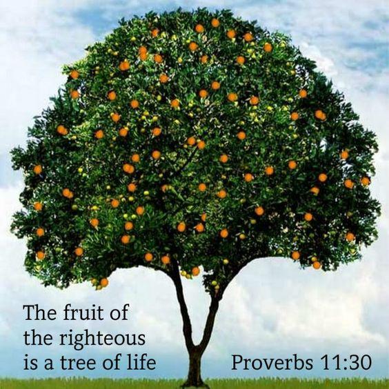 Proverbs 11:30 | by joshtinpowers