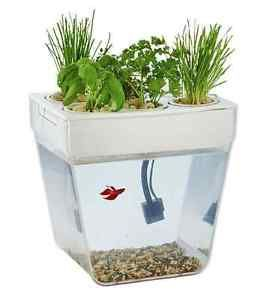 Aquaponic-Garden-System-Organic-Hydroponic-Growing-Vegetable-Indoor-Aquarium-Kit