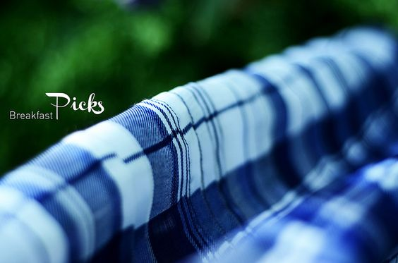 Blue and white checked skirt in our garden … Breakfast Picks on 03.06.2012 via Neu4bauer