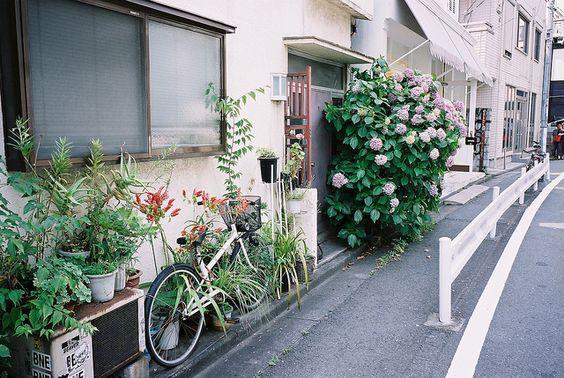 Harajuku by 小狼, via Flickr