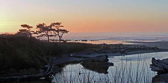 Olympic National Park & Peninsula Lodging | Kalaloch Lodge Great way to start the day!