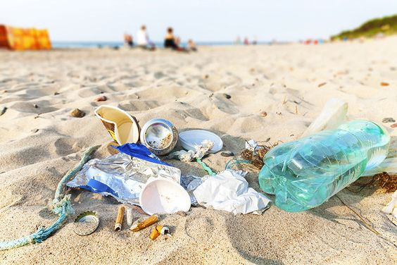 Yeah, you may have recycled in college, but one college student took that effort from the dorm to the ocean. | 11 Inventions By Undergrads That Are Totally Impressive