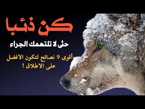 كن ذئبا حثى لا تلتهمك الجراء أقوى 9 نصائح لتكون الافضل على الاطلاق Youtube Movie Posters Poster