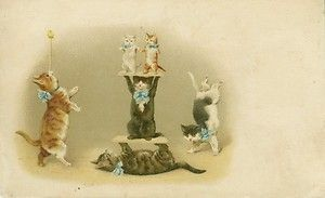 Helena Maguire often illustrated cat cards in thematic series. My favorite images are those of circus or acrobatic cats. Unlike dogs, how many cats do you know who do tricks?