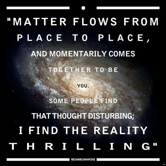 "quote:""Matter flows from place to place, and momentarily comes together to be you"" - Richard Dawkins"
