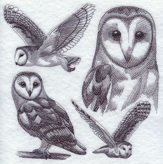 Barn Owl Sketch machine embroidery designs