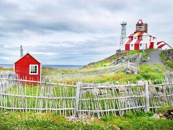 10 things you must see and do when you visit Newfoundland and Labrador