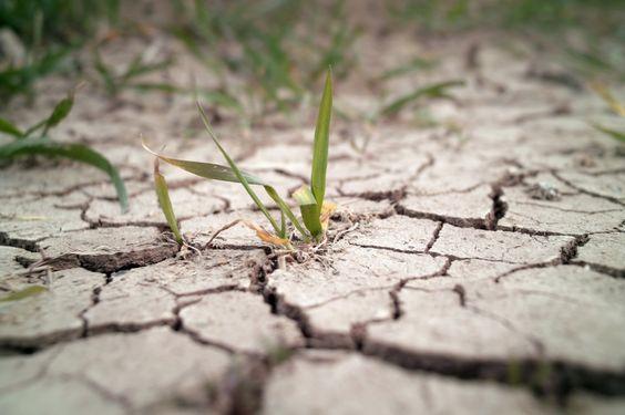 Aquecimento global pode deixar 1,75 bilhão de pessoas sem água