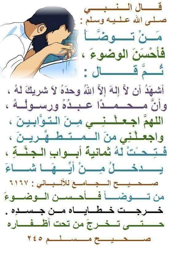 آيات الاستغفار والتوبة في القرآن فضله وأثره وصيغه الله معنا Allahm3ana Math Aic Math Equations