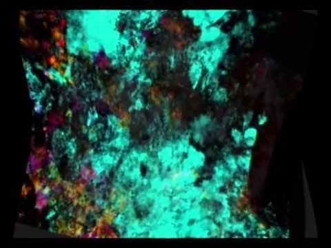 """Francisco Cuéllar Sánchez """"Cusan"""". Video pintura """"Al atardecer con Bach"""", inspirada en la música de Bach. La música acompaña la imagen que se transforma continuamente, donde siempre aparecen nuevos elementos, que se suman a la imagen a la vez que otros desaparecen..."""