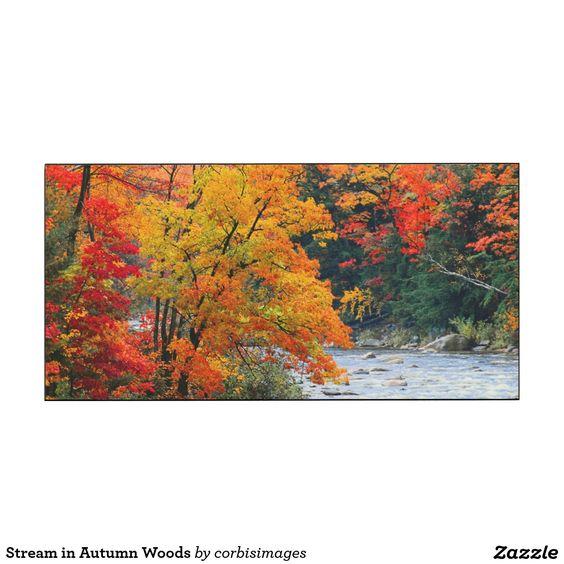 Stream in Autumn Woods Wood Wall Art