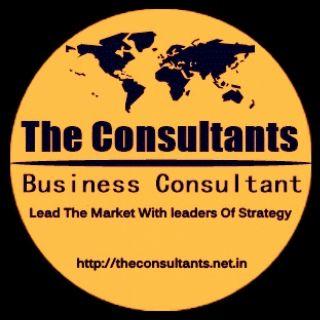Business Consultant Delhi India