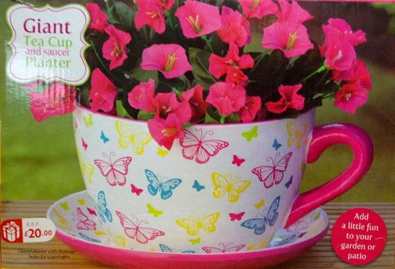 Giant Butterfly Design Tea Cup And Saucer Planter Plant Pot Mothers Day Gift Amazing