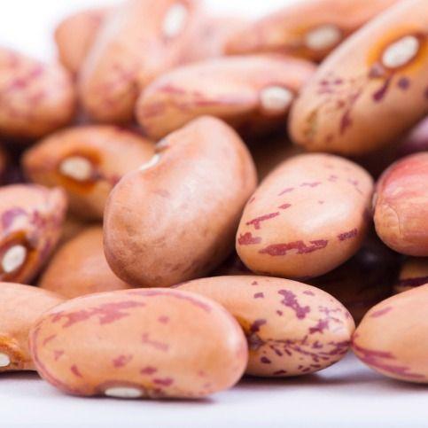 Insalata proteica