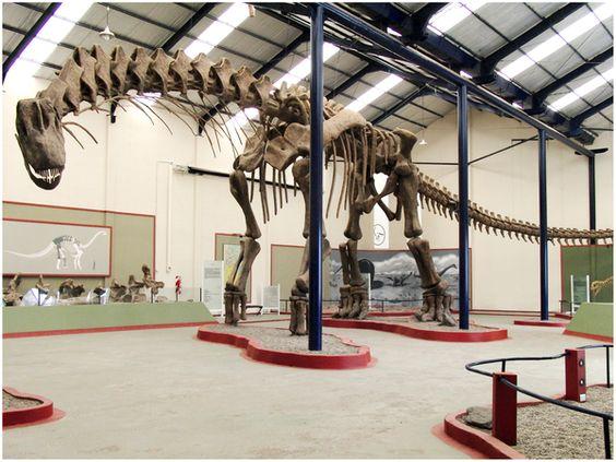 Reconstruction d'Argentinosaurus huinculensis au Museo Municipal Carmen Funes, Plaza Huincul, Neuquén, Argentina