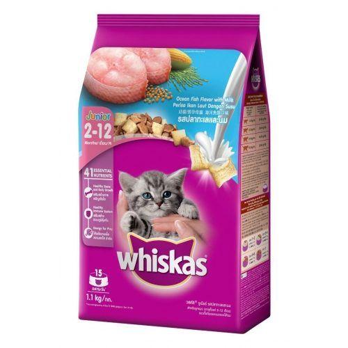 Related Post อาหารแมวชน ดเป ยกสำหร บแมวท กสายพ นธ อาย ต งแต Dog Link ปลอกคอส น ข ขนาด 25 มม ส เหล อง Doglink ชามให อาหารสำหร อาหารส ตว ล กแมว อาหาร