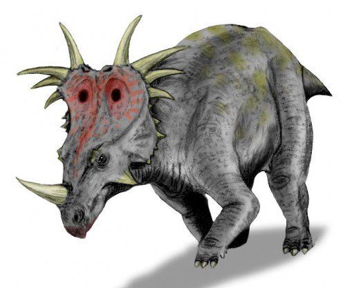 This Is Styracosaurus A Ceratopsian Dinosaur That Matches The Description Of Ngoubou Prehistoric Animals Prehistoric Animals
