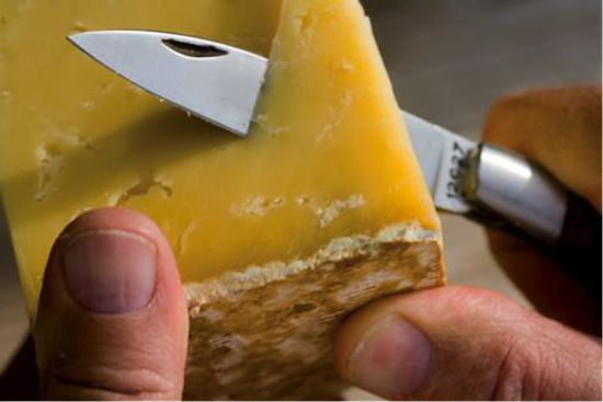 Fromage Salers