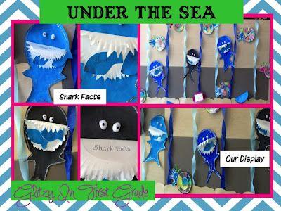 Summer School: Ocean  Shark Facts