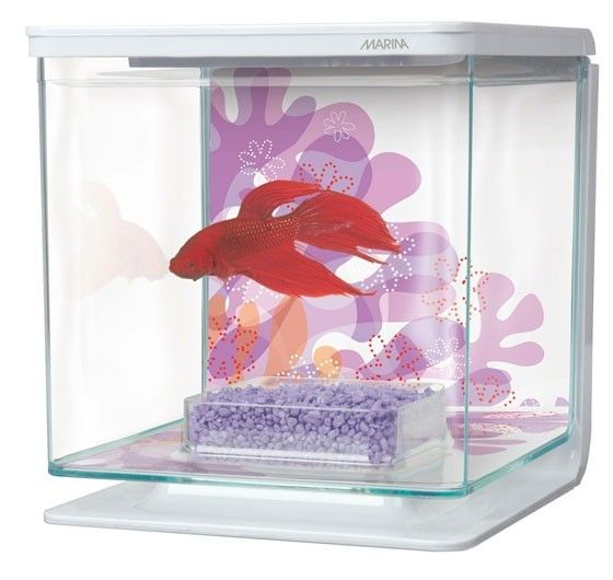 Marina Flower Theme Betta Kit ($14.99 @ homesalive.ca)