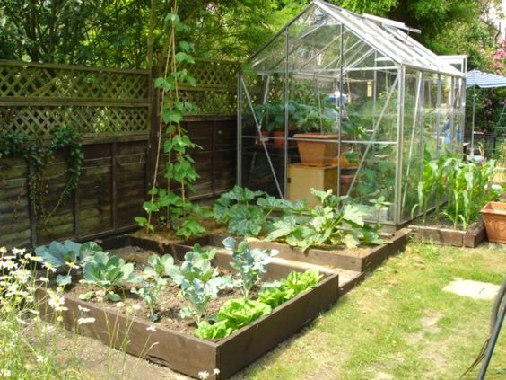Vegetable Gardens For Small Yards Vegetable Garden Ideas