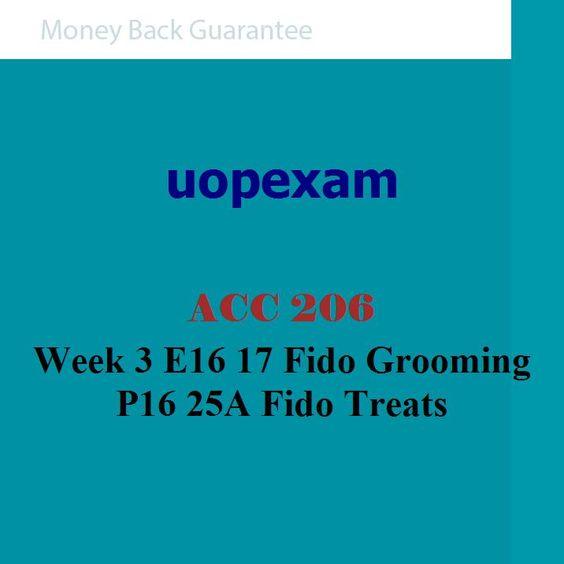 ACC 206 Week 3 E16 17 Fido Grooming P16 25A Fido Treats