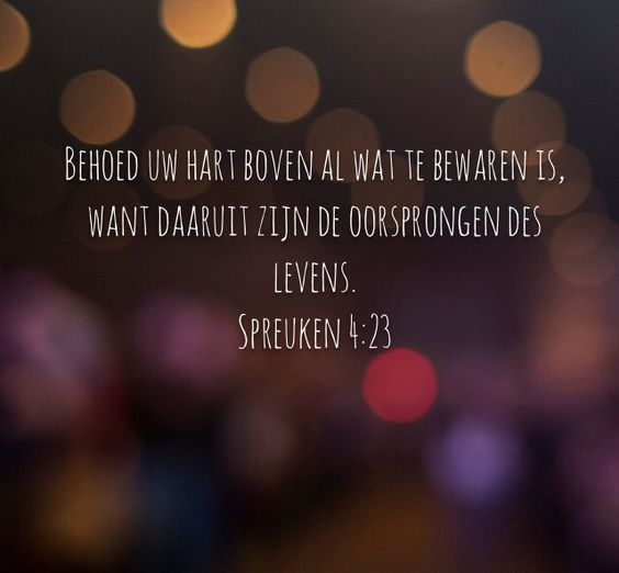 LIFEHOUSENL//Spreuken 4:23