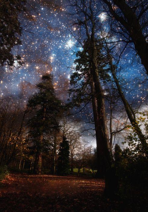 Moon. NEBULA, star.The Milky Way.