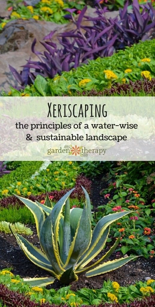 Gardens sprinklers and conservation on pinterest for Sustainable landscape design