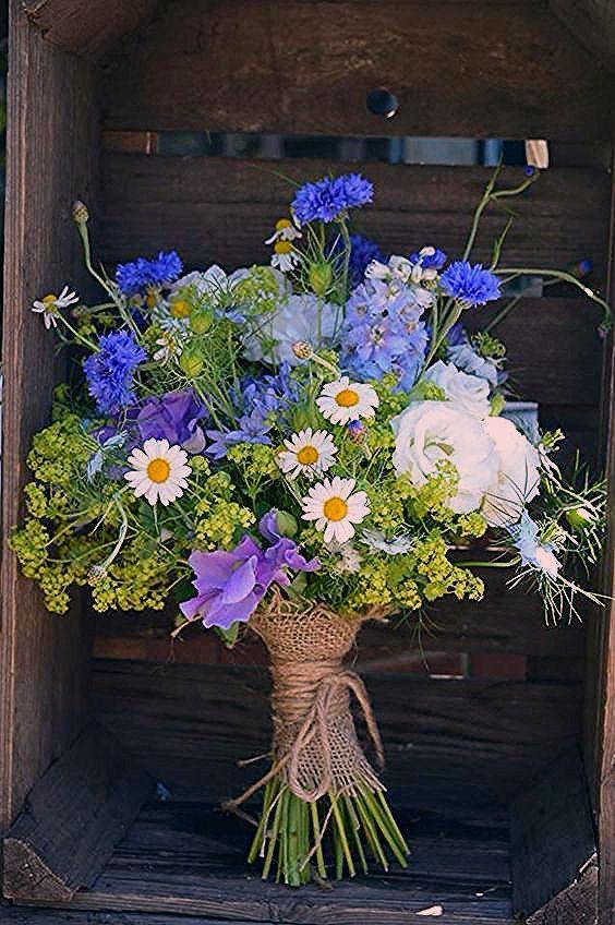 باقة ورد جميلة باقات ورد صباحية جميلة جدا باقة ورد كبيرة Zina Blog Purple Tulips Tulips Flowers