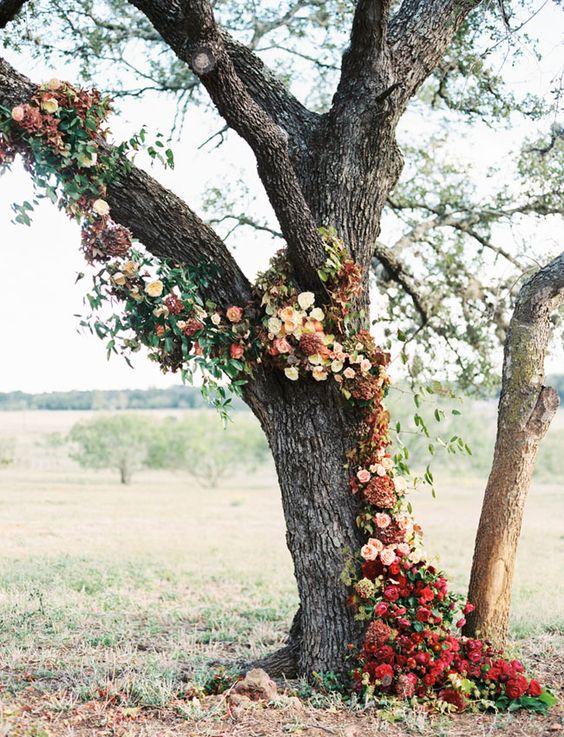 9 fa ons de d corer un arbre pour votre mariage d coration forum. Black Bedroom Furniture Sets. Home Design Ideas