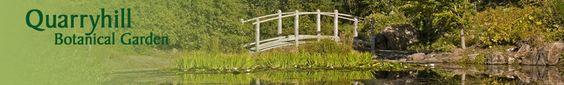 Quarryhill Asian Botanical Gardens in Sonoma - go in spring - light hiking for the kids #bayarea