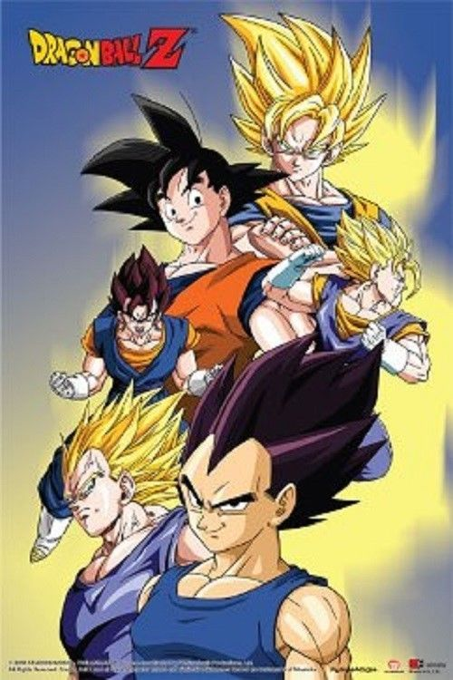 24x36 Dragonball Z Poster shrink wrapped