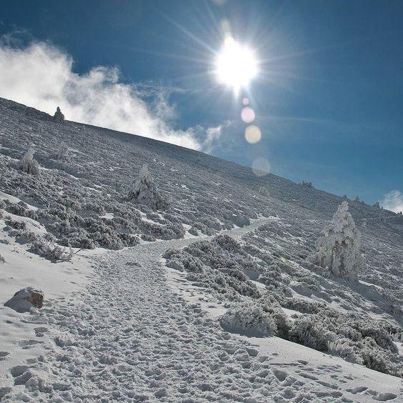 Damos la #bienvenida al #invierno! Welcome #winter! A ver si dentro de no mucho podemos disfrutar de un poquito de #nieve... #puertodenavacerrada #navacerrada #madrid #españa #planesmadrid #paisajenevado #tienesplaneshoy #Travel #travelbloggers #spain #travelgram #snowlandscape #spain_beautiful_landscapes #naturelovers #mountain #snow #welcomewinter #landscape #wintersun #trekking #landscape_lovers #mountainlife #senderismo by tienesplaneshoy