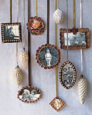 .love the pinecone frames