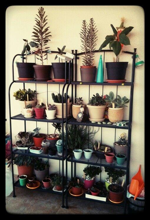 Garden Ideas Ikea balcony garden with ikea lacko shelves | ideas | pinterest