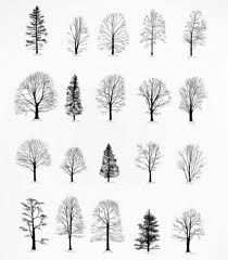 drawing trees google search art journaling pinterest drawing trees drawings and google search