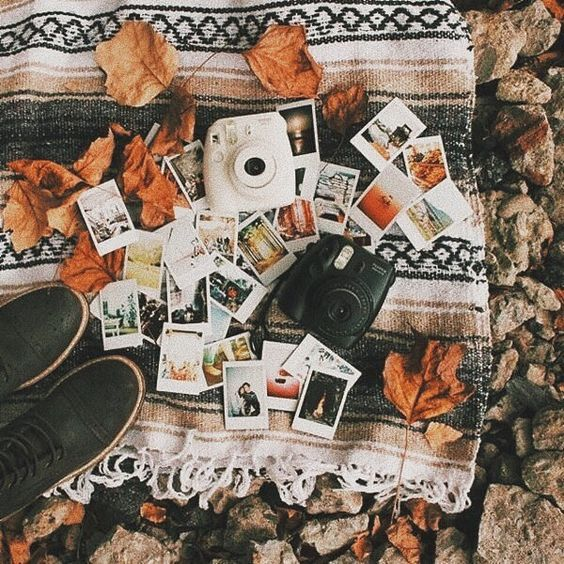If I wasn't so broke I'd buy myself one of them Polaroid cameras ♥️ They're definitely on my wish list ~Caroline #autumn #fall #autumn2018 #fall2018 #autumncolours #autumnleaves #halloween #september #october #november #autumndays #falldays #rainydays #weheartautumn #instafall #fallobsessed #autumnobsessed #autumninstagram #pumpkins #autumnaccount #fallaccount #orange #brown #autumnal