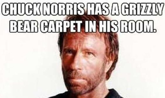 Pin By Blue Cheese On Chuck Norris Memes Without Bottom Text Chuck Norris Memes Chuck Norris Norris