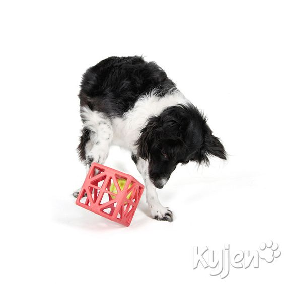 Cagey Cube - Rubber dog puzzle for dogs who love tennis balls. The ball is trapped inside the Cagey Cube and dogs need to figure out how to get it out. Keeps dogs playing for a long time! Available from ActiveDogToys.com