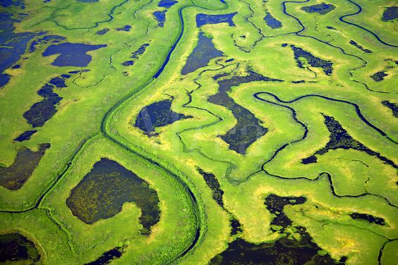 Aerial Copper River Delta, Chugach National Forest, Alaska.