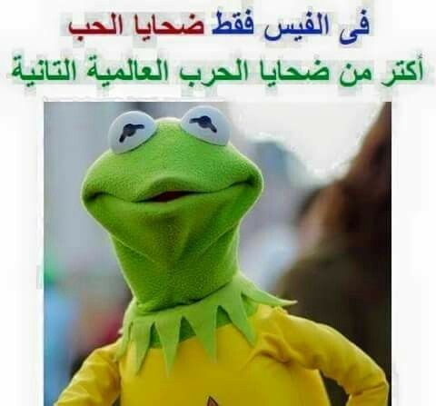 Pin By Q N On أبتسم Funny Frogs Funny Jokes Funny