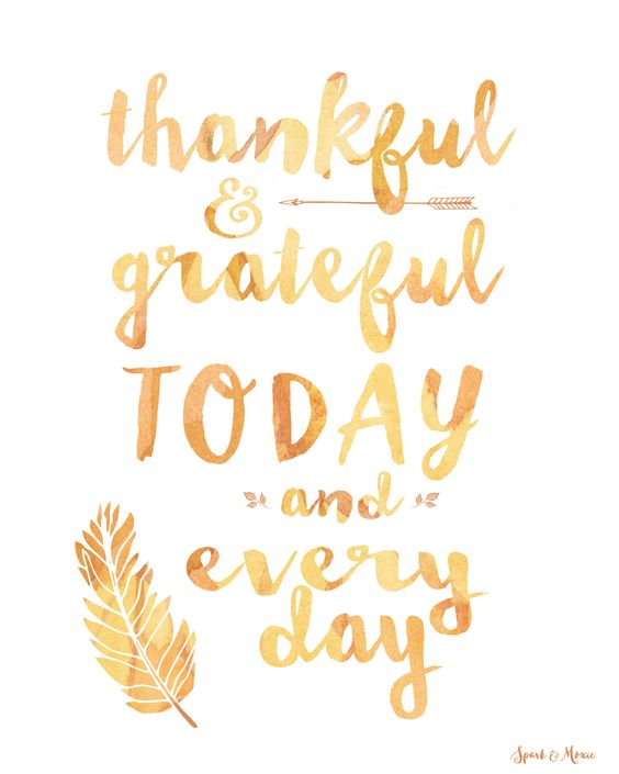 """Thankful & Grateful Today and Every Day."" #Thanksgiving #quote art #freebie…"