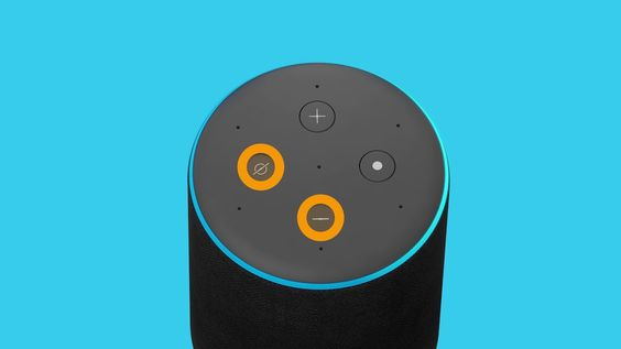 Pin On How To Setup Alexa App