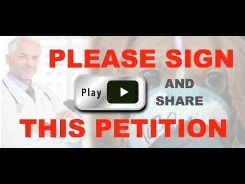 """Please Sign and Share Petition to STOP """"Assault Weapons Ban of 2015"""" - YouTube"""