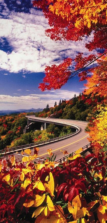 Blue Ridge Parkway - Runs for 469 miles through 29 Virginia and North Carolina counties. USA Been there done that.