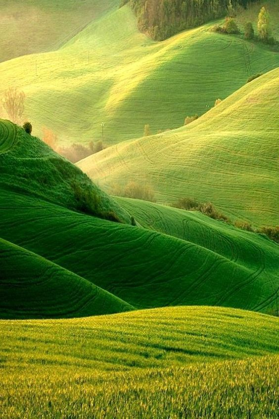 Lightroom crop landscape to portrait