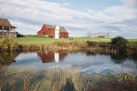 Barn at Gibbet Hill; Massachusetts wedding venue, Farm to Fork; Groton, MA #newenglandwedding #farmwedding #barnwedding Photography by Kate Preftakes: