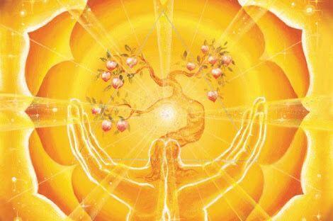 Feed your Solar Plexus #solarplexus #chakra #spiritual #solar #plexus # diet #angel #blessings #balance chakra